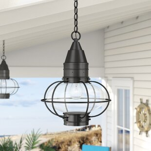 New Style Withyditch 1-Light Outdoor Hanging Lantern By Breakwater Bay