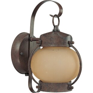Rhian 1-Light Outdoor Sconce By Breakwater Bay Outdoor Lighting