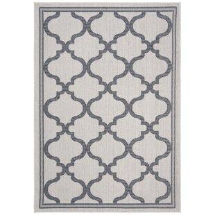 Hahn Ivory/Charcoal Indoor/Outdoor Area Rug