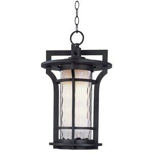Feltonville 1-Light Outdoor Hanging Lantern