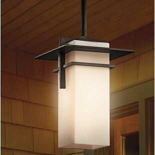 Searching for Sulphur 1-Light Outdoor Hanging Lantern By Loon Peak