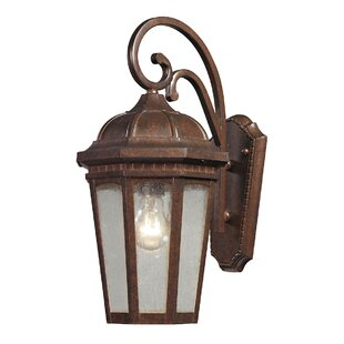 Where buy  Greco 1-Light Outdoor Wall Lantern By Astoria Grand
