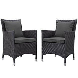 Gladiolus Patio Dining Chair with Cushion (Set of 2)