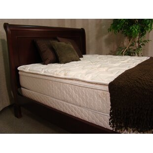 Egret 12 Feather Edge Flotation Complete Bed Set by Vinyl Products