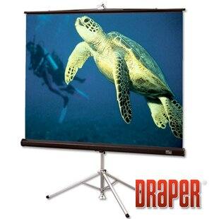 Diplomat/R with Carpeted Case Matt White Portable Projection Screen