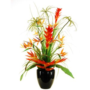 Deluxe Tropical Arrangement in a Tapered Vase