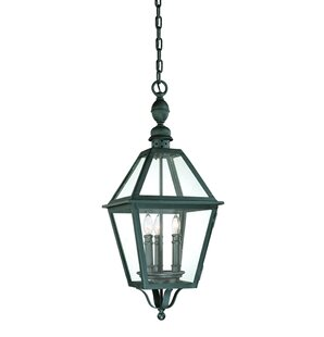 Theodore 3-Light Outdoor Hanging Lantern