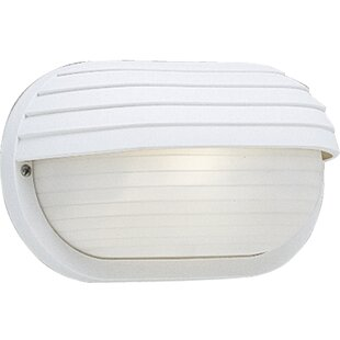 BundinieHill 1-Light Outdoor Flush Mount