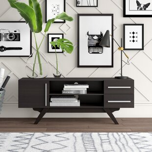 Elkins Park TV Stand for TVs up to 60