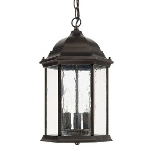 Hearne 3-Light Outdoor Hanging Lantern