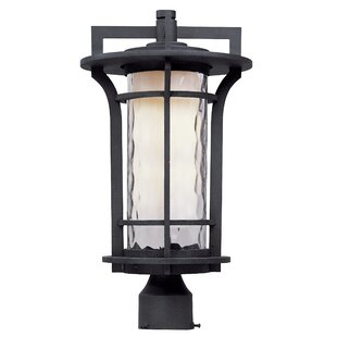 Best Reviews Espitia Outdoor 1-Light Lantern Head By Millwood Pines