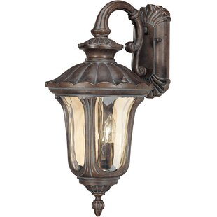 Pinney 2-Light Outdoor Wall Lantern