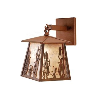 Coupon Reeds and Cattails 1-Light Outdoor Wall Lantern By Meyda Tiffany