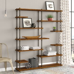 Cirillo Industrial Mid-Century Library Bookcase by Williston Forge