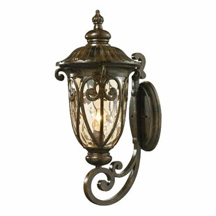 Sargent 1-Light Outdoor Wall lantern
