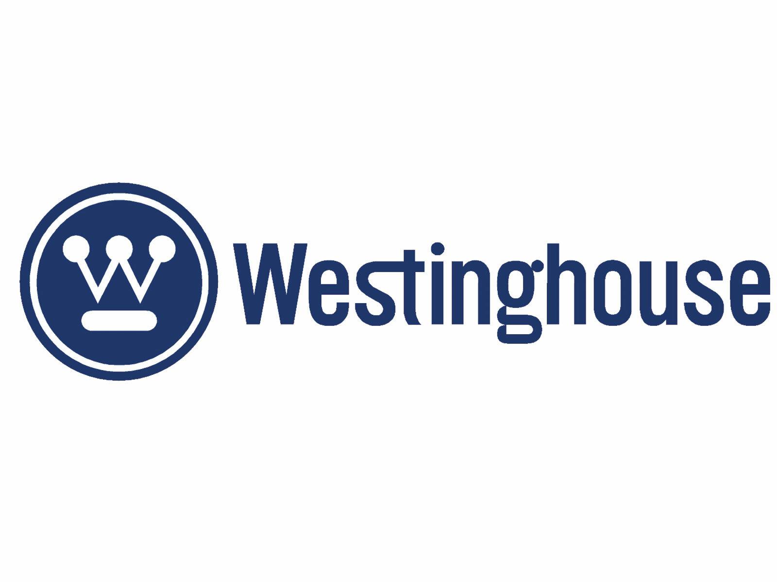 Westinghouse Lighting Wayfair