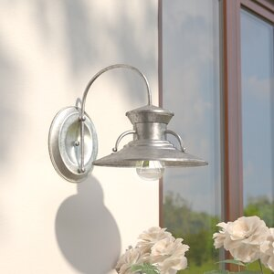 Oriana 1-Light Outdoor Barn Light