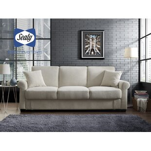 Buy clear St Anne Sofa by Sealy Sofa Convertibles Reviews (2019) & Buyer's Guide