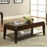 Palou Lift Top Coffee Table with Storage by Darby Home Co