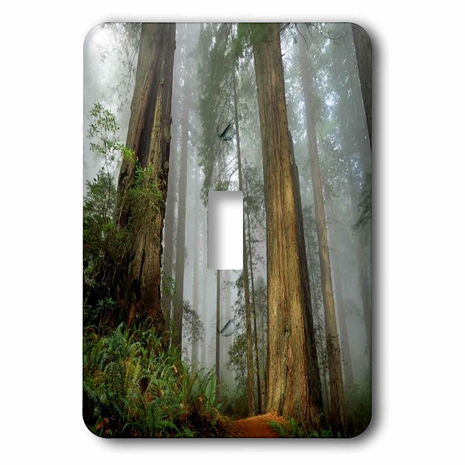 3drose Mist In The Forest 1 Gang Toggle Light Switch Wall Plate Wayfair
