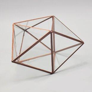 Geometric Terrarium Bulk Wayfair Ca