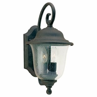 Reviews Elizabeth 2-Light Outdoor Wall Lantern By Fleur De Lis Living
