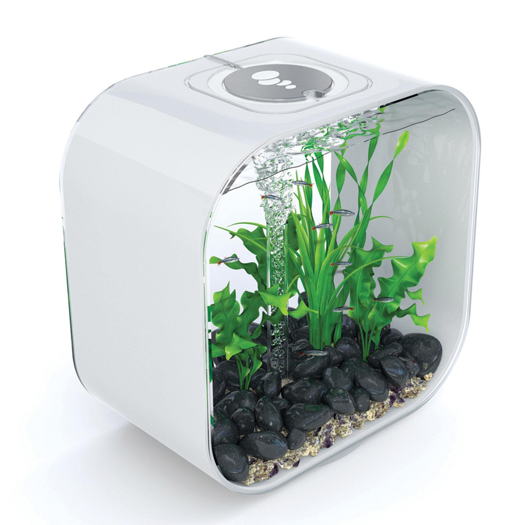 biOrb 8 Gallon Life Aquarium Tank | Wayfair