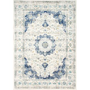 Emely Blue/Grey Area Rug by Lily Manor