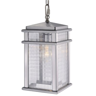 Brayden Studio Divya 1-Light Outdoor Hanging Lantern
