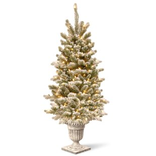 4 White Green Spruce Trees Artificial Christmas Tree With Clear Lights