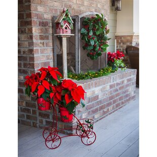 Gladstone Multi-Tiered Plant Stand by August Grove
