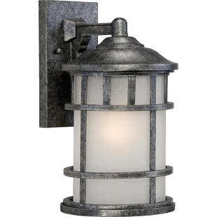 Where buy  Sweeting 1-Light Outdoor Wall Lantern By Millwood Pines