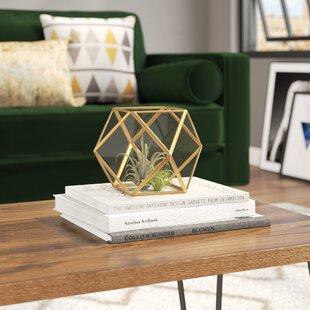Glass Terrarium Table Wayfair
