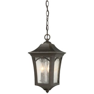Coyan 3-Light Outdoor Hanging Lantern