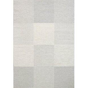 Schwartz Gray/Cream/Blue Indoor/Outdoor Area Rug