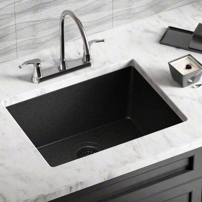 Granite Composite 22 L X 17 W Undermount Kitchen Sink With Strainer