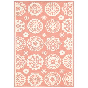 New Hartford Pink Indoor/Outdoor Area Rug