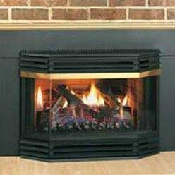 Napoleon Bay Window Glass Door Gas Fireplace & Reviews | Wayfair