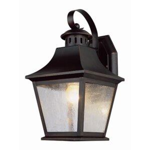 Ellicottville 1-Light Outdoor Wall Lantern