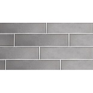 Secret Dimensions 3 X 12 Gl Subway Tile In Frosted Silver