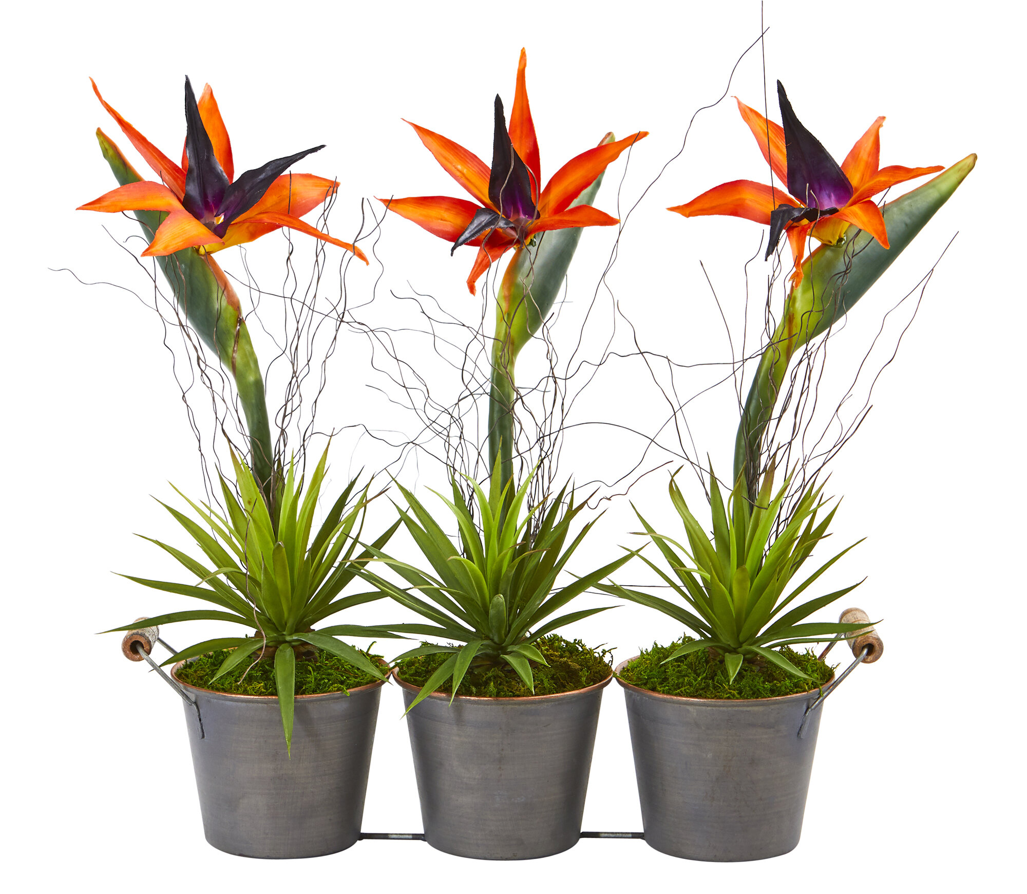 Bay Isle Home Bird Of Paradise And Succulent Artificial Mixed Floral Arrangement In Planter Wayfair