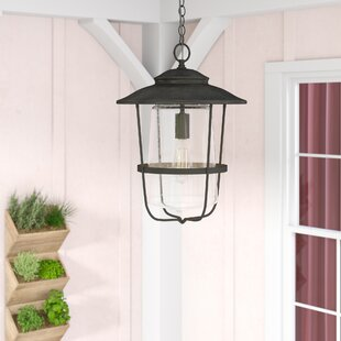 Compare Remington 1- Light Outdoor Hanging Lantern By Birch Lane™