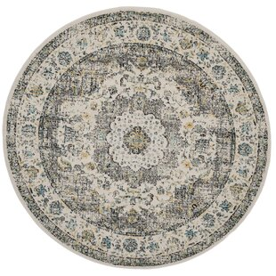 Elson Gray/Gold Area Rug by Mistana
