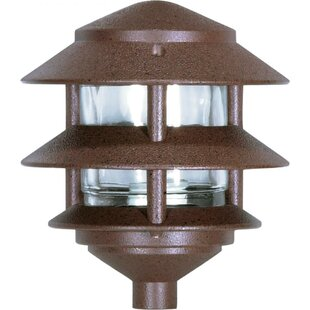 Best Choices Aslan Traditional Outdoor 1-Light Lantern Head By Bloomsbury Market