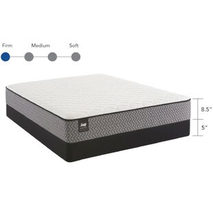 Response Essentials 8.5 inch  Firm Tight Top Mattress and Box Spring