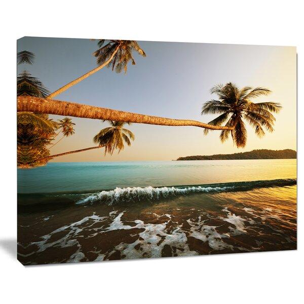 Designart Andaman Sea Large Coconut Palms Large Seashore Photographic Print On Wrapped Canvas Wayfair