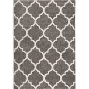 McSpadden Trellis Shag Gray/White Area Rug with Rug Pad By House of Hampton