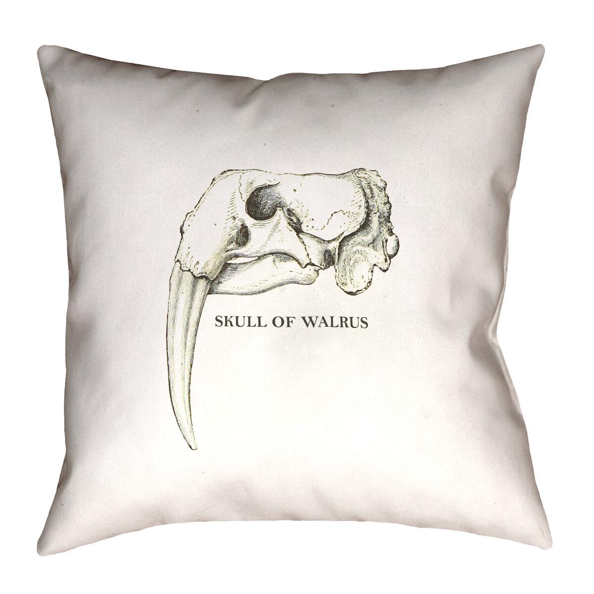 17 Stories France Walrus Skull Throw Pillow Wayfair