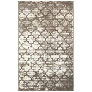 Find the perfect Droylsden Tan/Cream Area Rug By Willa Arlo Interiors