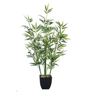 Bamboo Couleur Du Socle Noir Wayfair Ca